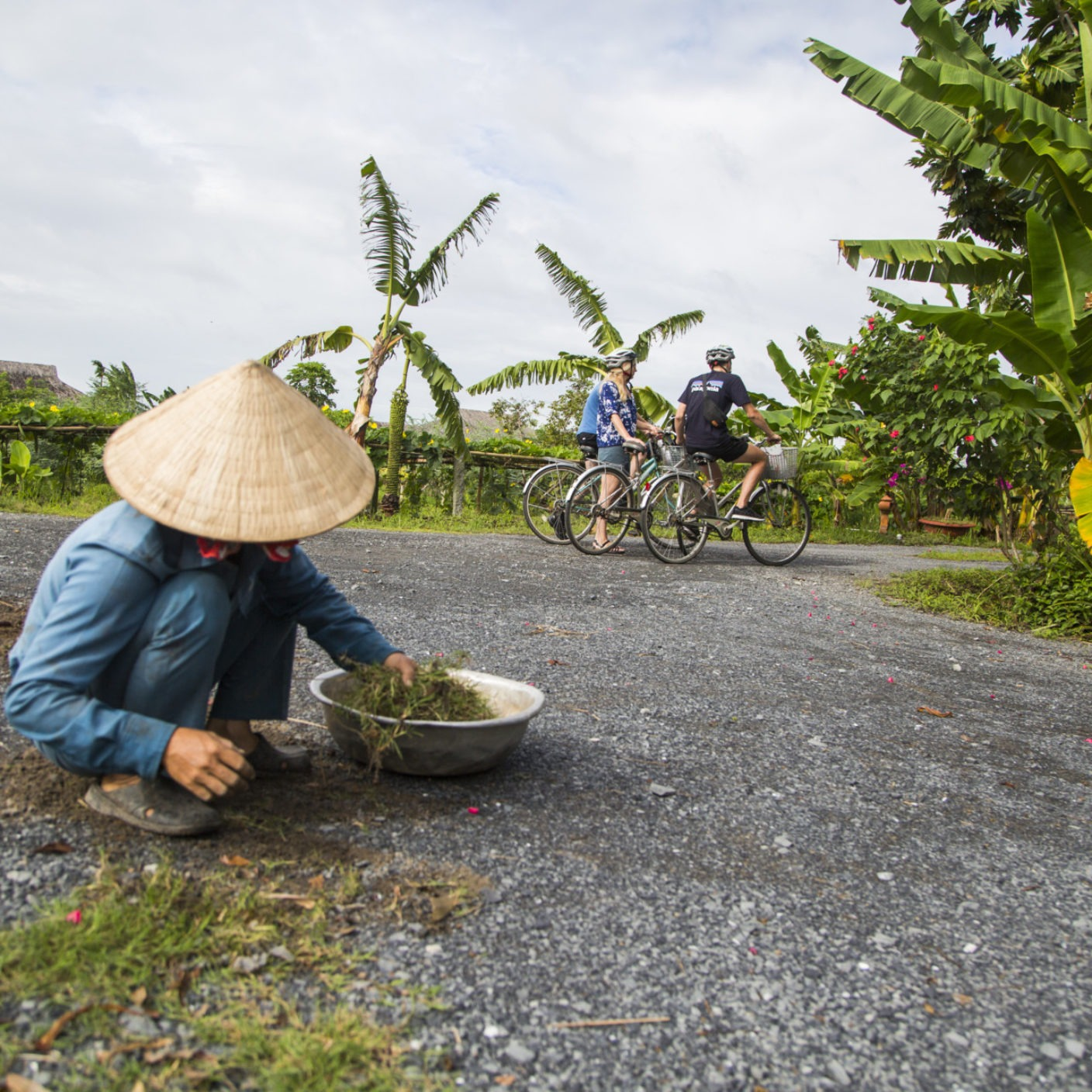 Rice farmer in front of cyclist in Mekong Delta