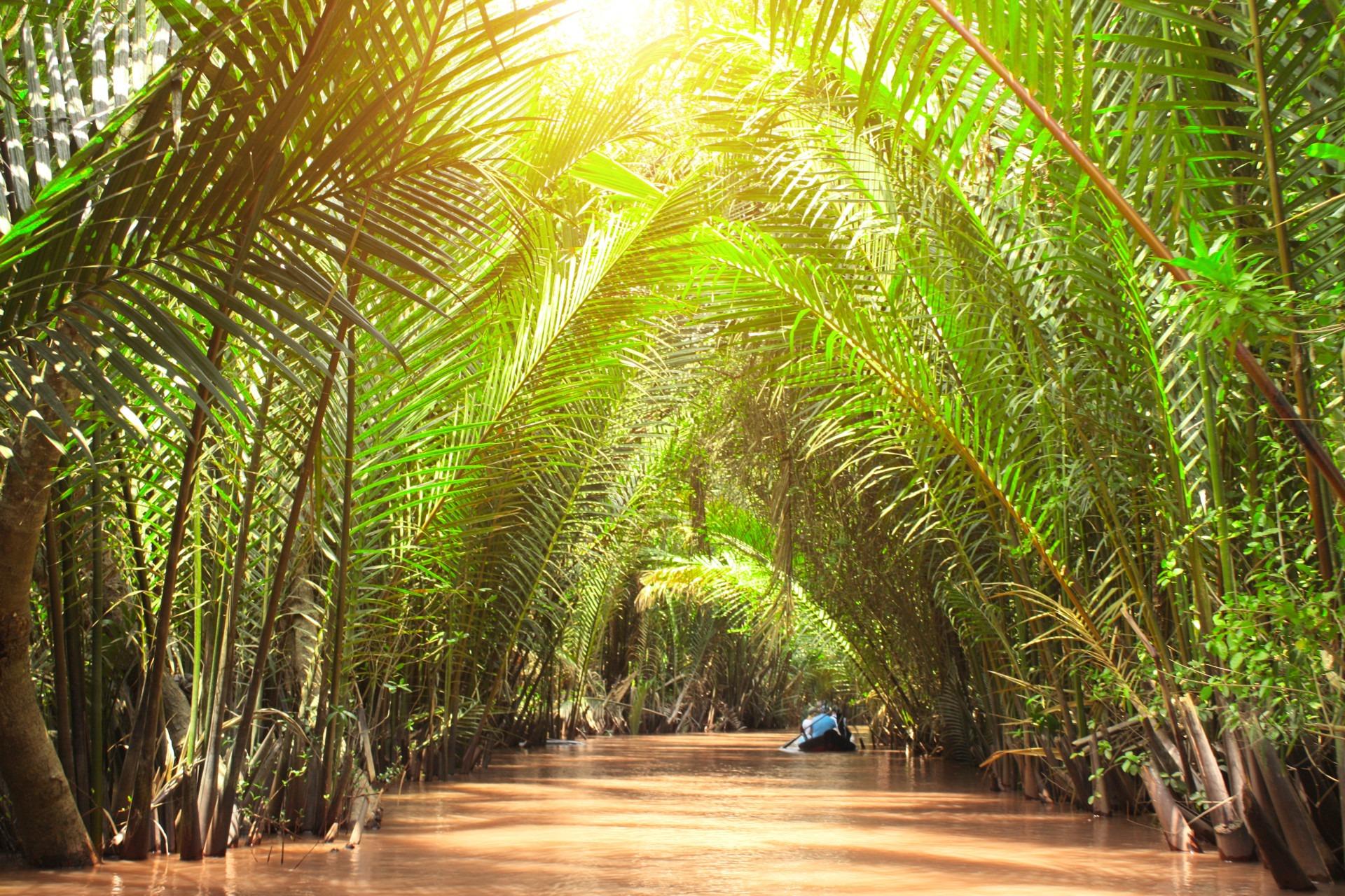Vietnam Mekong Tours