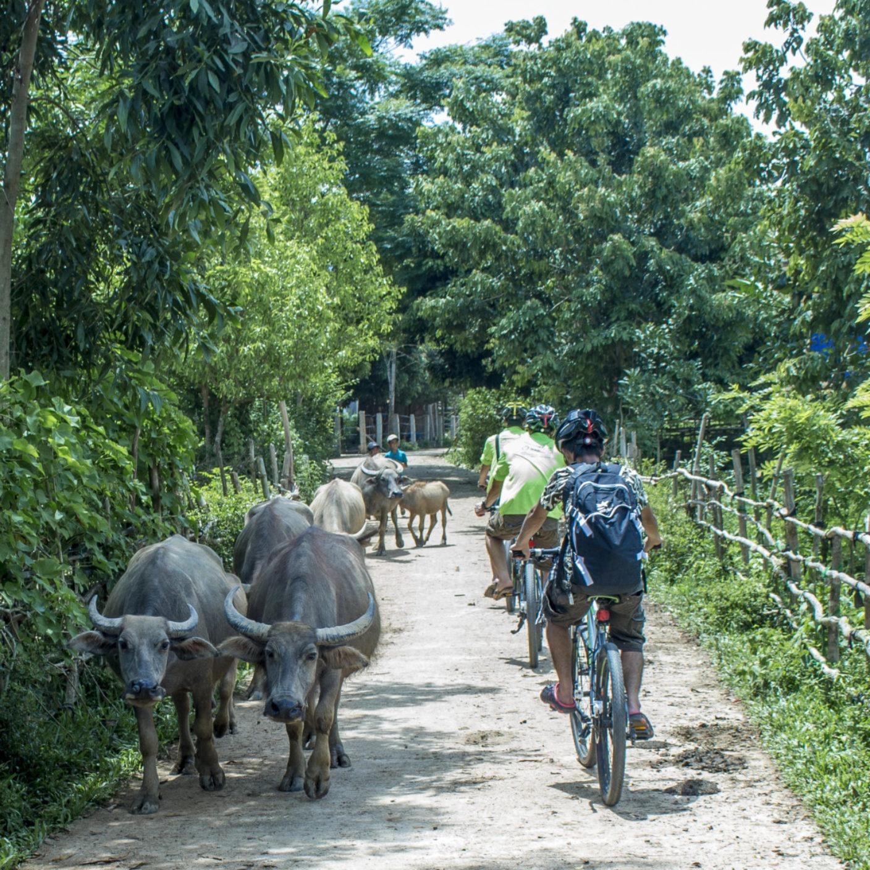Cycling in Phong Nha